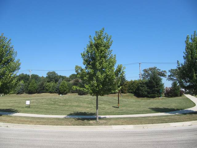 885 E Writer Court, Vernon Hills, IL 60061 (MLS #10579744) :: Baz Realty Network | Keller Williams Elite