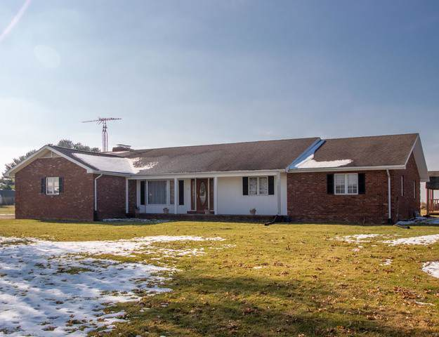 29944 N 1728 East Road, ALVIN, IL 61811 (MLS #10579794) :: Property Consultants Realty