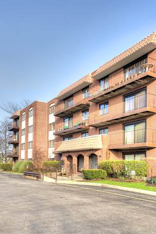 2086 Saint Johns Avenue #308, Highland Park, IL 60035 (MLS #10580104) :: Lewke Partners