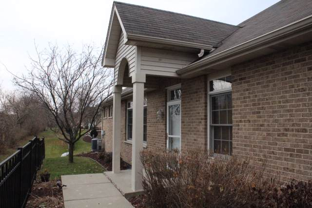 10523 Thornham Lane #10523, Mokena, IL 60448 (MLS #10580421) :: The Wexler Group at Keller Williams Preferred Realty