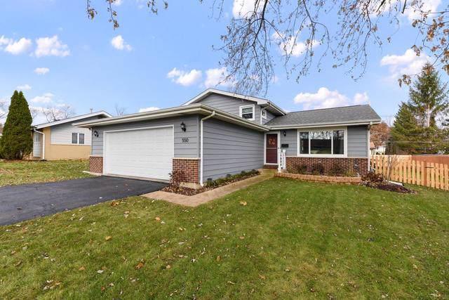 550 Morgan Lane, Hoffman Estates, IL 60169 (MLS #10580528) :: The Wexler Group at Keller Williams Preferred Realty