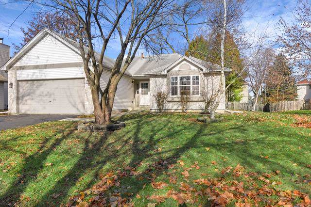 13148 S Golden Meadow Drive, Plainfield, IL 60585 (MLS #10580566) :: Property Consultants Realty