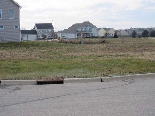 Lot 256 Parkside Drive, Sycamore, IL 60178 (MLS #10580580) :: John Lyons Real Estate