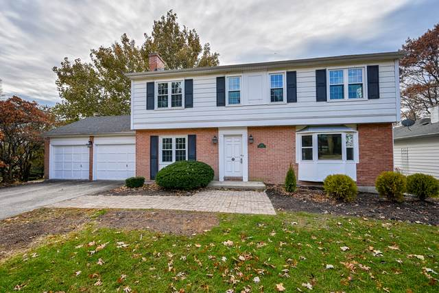 1101 35th Street, Downers Grove, IL 60515 (MLS #10580712) :: Angela Walker Homes Real Estate Group