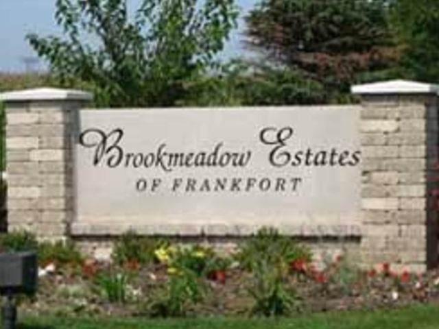 11 Lots Brookmeadows Estates, Frankfort, IL 60423 (MLS #10580787) :: The Wexler Group at Keller Williams Preferred Realty