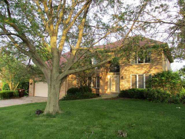 20115 Overland Trail Trail, Olympia Fields, IL 60461 (MLS #10580979) :: The Wexler Group at Keller Williams Preferred Realty
