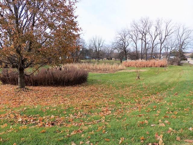 000 Leaf River Road, Leaf River, IL 61047 (MLS #10581671) :: Lewke Partners