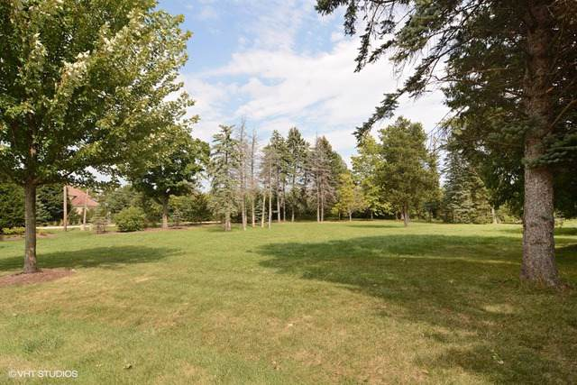 Lot 3 Geneva Court, Inverness, IL 60010 (MLS #10581972) :: Touchstone Group
