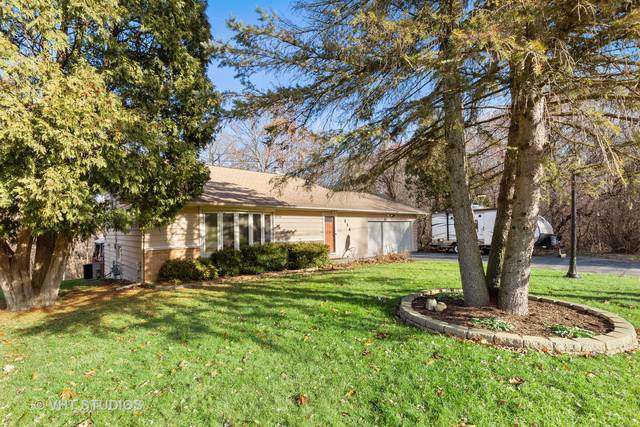 114 Lake Shore Drive, Carpentersville, IL 60110 (MLS #10582367) :: Angela Walker Homes Real Estate Group