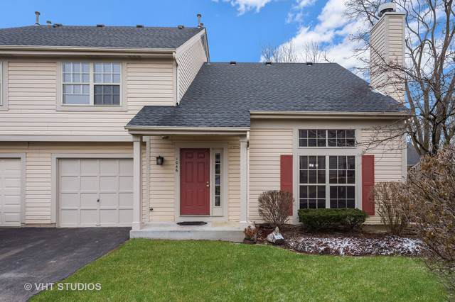 1046 N Knollwood Drive, Palatine, IL 60067 (MLS #10582726) :: Touchstone Group