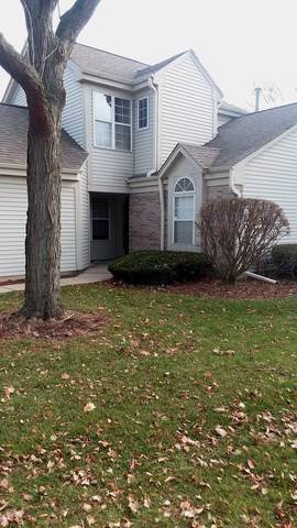 1659 Revere Court, Montgomery, IL 60538 (MLS #10582757) :: Property Consultants Realty