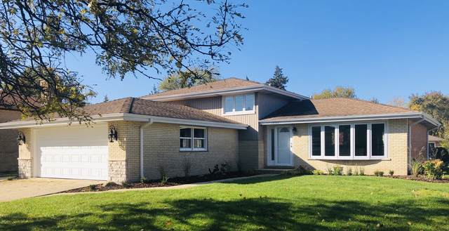 10502 S Vicky Lane, Palos Hills, IL 60465 (MLS #10583011) :: Property Consultants Realty