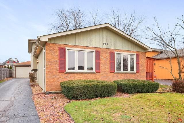 1025 Hermes Avenue, Lemont, IL 60439 (MLS #10583075) :: The Wexler Group at Keller Williams Preferred Realty