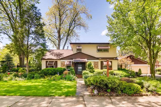 2426 Sarah Street, Franklin Park, IL 60131 (MLS #10583461) :: The Wexler Group at Keller Williams Preferred Realty