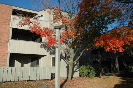 1850 W Highland Avenue F105, Elgin, IL 60123 (MLS #10583473) :: Property Consultants Realty