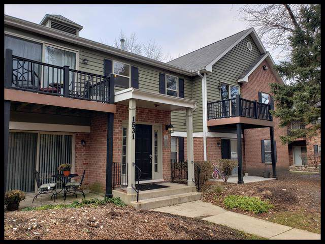 1531 Raymond Drive #204, Naperville, IL 60563 (MLS #10583529) :: Touchstone Group