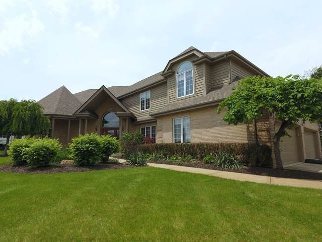 21222 Prestancia Drive, Mokena, IL 60448 (MLS #10583534) :: The Wexler Group at Keller Williams Preferred Realty