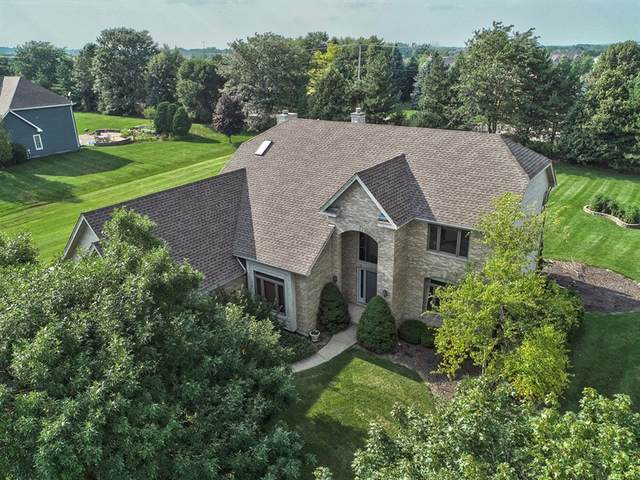 1 Shearwater Court, Hawthorn Woods, IL 60047 (MLS #10583563) :: Helen Oliveri Real Estate