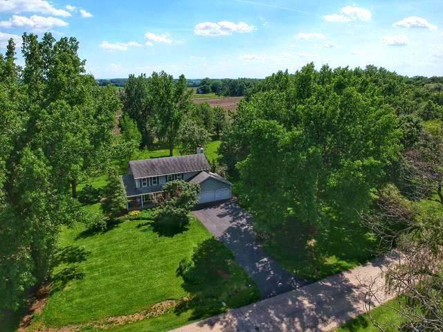 43W585 Hawkeye Drive, Elburn, IL 60119 (MLS #10583729) :: Ani Real Estate