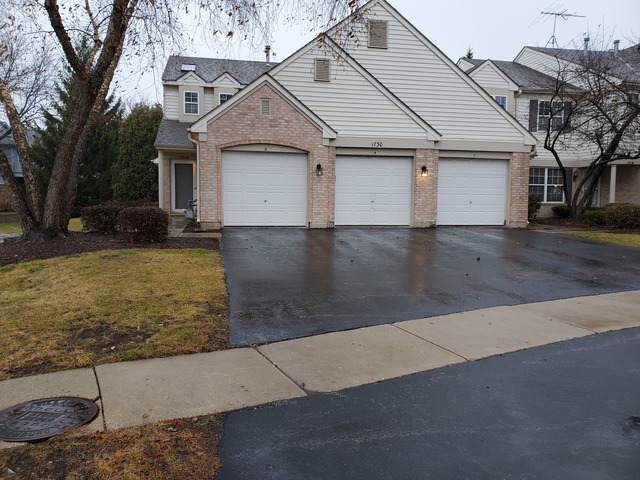 1730 Autumn Avenue A, Schaumburg, IL 60193 (MLS #10583841) :: LIV Real Estate Partners