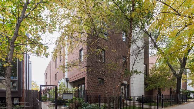 1742 W Diversey Parkway #1, Chicago, IL 60614 (MLS #10584237) :: Property Consultants Realty