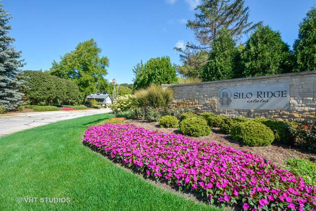 Lot #74 Windmill Turn Dr, Orland Park, IL 60467 (MLS #10584741) :: Touchstone Group