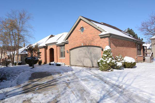 317 Torrington Drive, Bloomingdale, IL 60108 (MLS #10584836) :: Touchstone Group