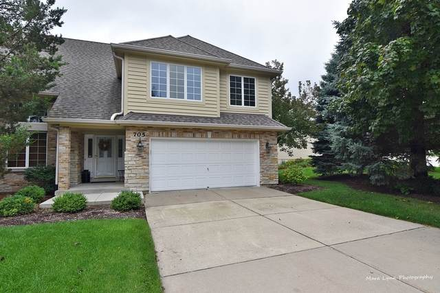 705 Manor Hill Place, Sugar Grove, IL 60554 (MLS #10585056) :: Touchstone Group