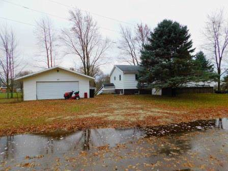110 First Street, Buckingham, IL 60917 (MLS #10585060) :: Property Consultants Realty