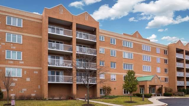 7450 N Waukegan Road #507, Niles, IL 60714 (MLS #10585121) :: Helen Oliveri Real Estate