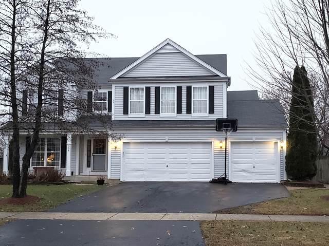 536 Wingpointe Drive, Aurora, IL 60506 (MLS #10585169) :: Ani Real Estate