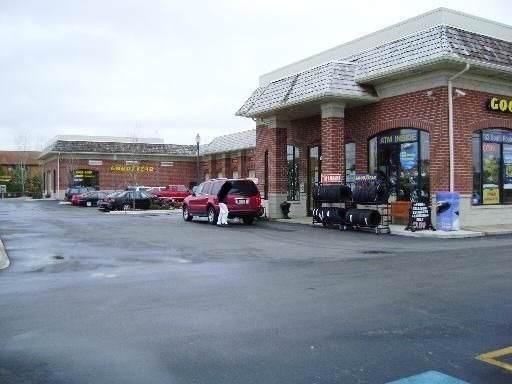 183 N Route 45 Highway, Grayslake, IL 60030 (MLS #10585241) :: Lewke Partners
