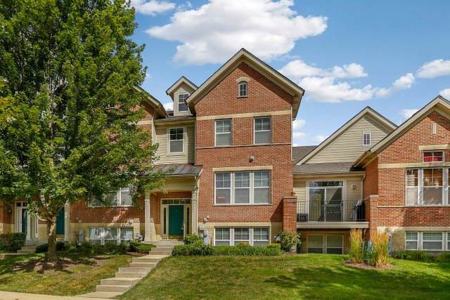 5603 Cambridge Way, Hanover Park, IL 60133 (MLS #10585402) :: Century 21 Affiliated