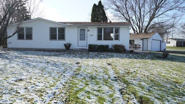 229 Tollview Terrace, Gilberts, IL 60136 (MLS #10585461) :: Suburban Life Realty