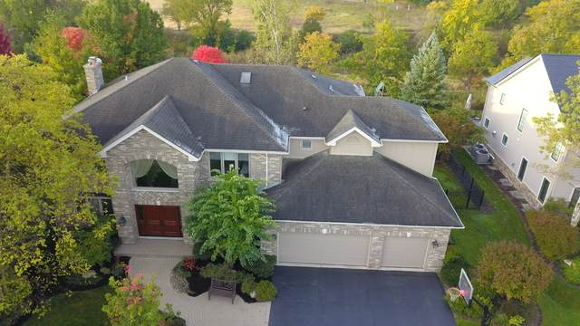 1569 Suzann Terrace, Northbrook, IL 60062 (MLS #10585490) :: The Spaniak Team