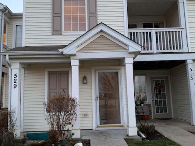 529 Silverstone Drive #529, Carpentersville, IL 60110 (MLS #10585904) :: Suburban Life Realty
