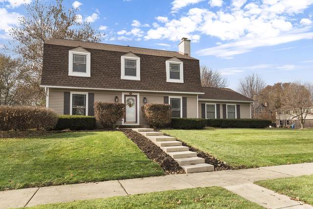 213 N Birchwood Drive, Naperville, IL 60540 (MLS #10585925) :: Property Consultants Realty