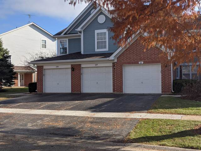 295 Ashbury Lane W, Roselle, IL 60172 (MLS #10586022) :: Lewke Partners