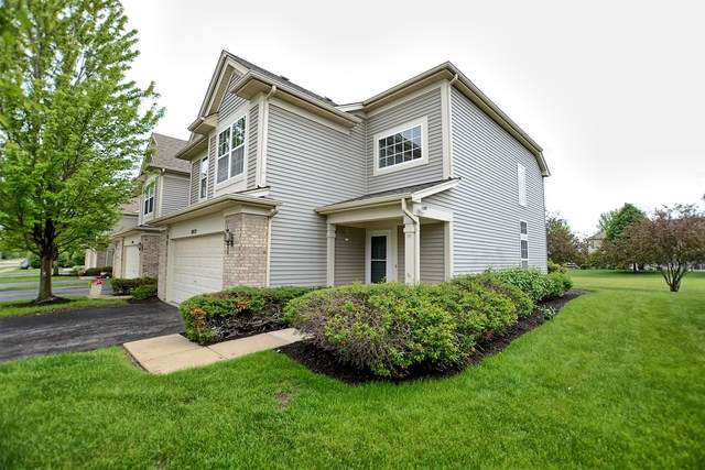 10028 Haverhill Lane, Huntley, IL 60142 (MLS #10586109) :: Ryan Dallas Real Estate