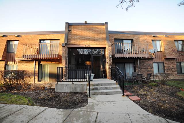 625 Derry Court 1B, Schaumburg, IL 60193 (MLS #10586289) :: The Wexler Group at Keller Williams Preferred Realty