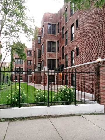 4549 S Michigan Avenue #1, Chicago, IL 60653 (MLS #10586371) :: Property Consultants Realty