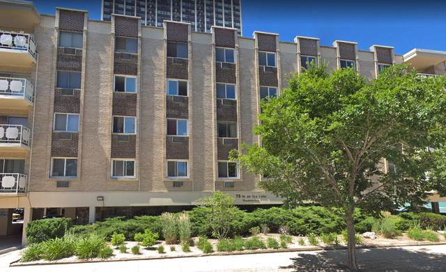 2772 E 75th Street 2NS, Chicago, IL 60649 (MLS #10586502) :: The Wexler Group at Keller Williams Preferred Realty