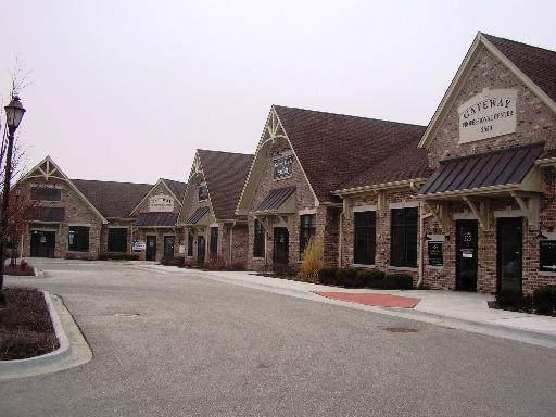 2540 Hauser Ross Drive #225, Sycamore, IL 60178 (MLS #10586799) :: Ani Real Estate