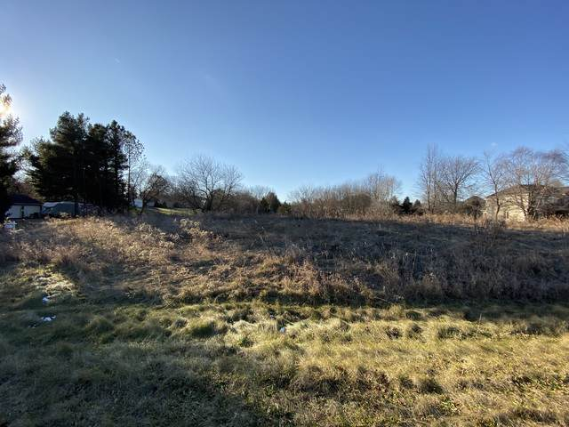 Lot 5 Bur Lane, Crystal Lake, IL 60014 (MLS #10586822) :: Ryan Dallas Real Estate