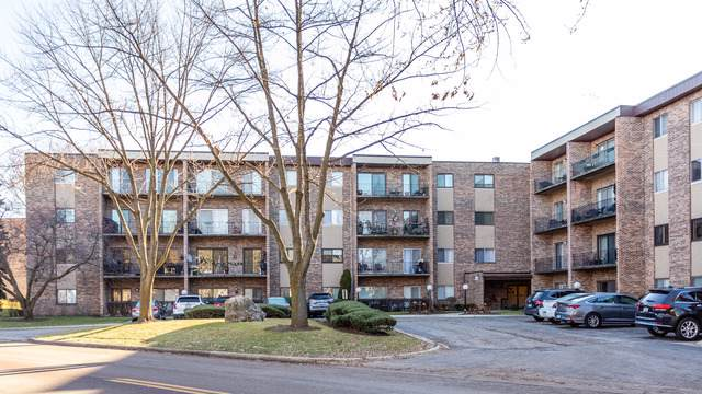 725 W Huntington Commons Road #204, Mount Prospect, IL 60056 (MLS #10586977) :: Helen Oliveri Real Estate