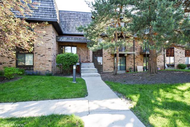 11 Oak Creek Drive #3115, Buffalo Grove, IL 60089 (MLS #10587139) :: Helen Oliveri Real Estate