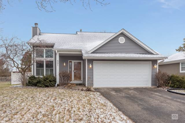501 Pinewood Drive, North Aurora, IL 60542 (MLS #10587316) :: Property Consultants Realty