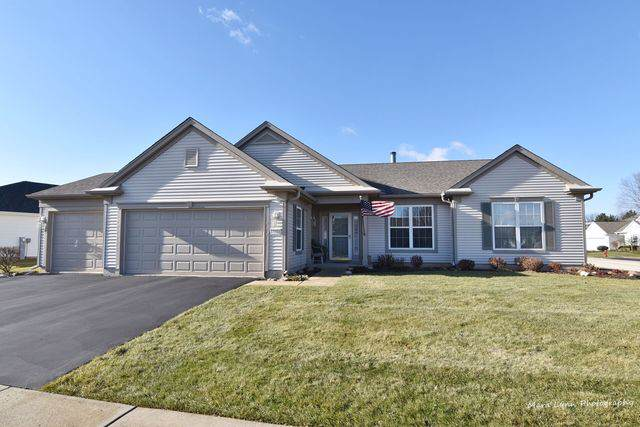 13311 Dakota Fields Drive, Huntley, IL 60142 (MLS #10587377) :: Ryan Dallas Real Estate