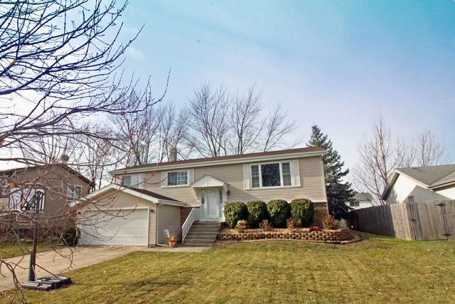 20106 S Sycamore Drive, Frankfort, IL 60423 (MLS #10587526) :: The Wexler Group at Keller Williams Preferred Realty