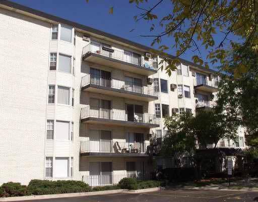 5510 Lincoln Avenue #208, Morton Grove, IL 60053 (MLS #10587750) :: Helen Oliveri Real Estate